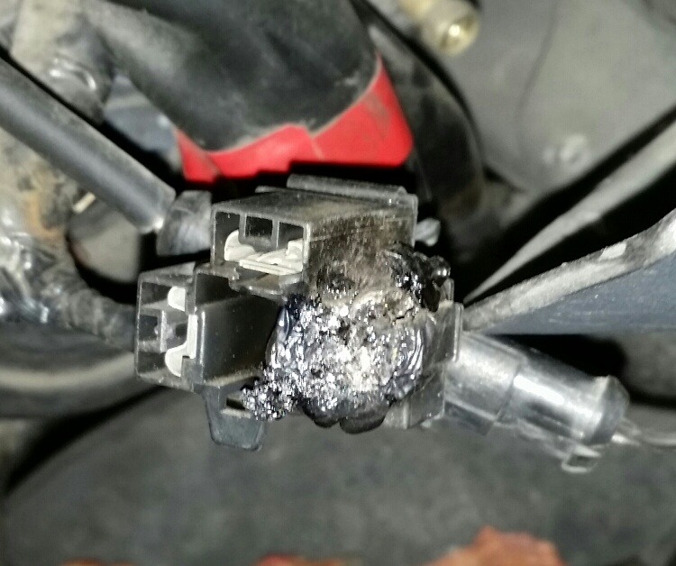Headlight Socket Ph : Burned out headlight connector