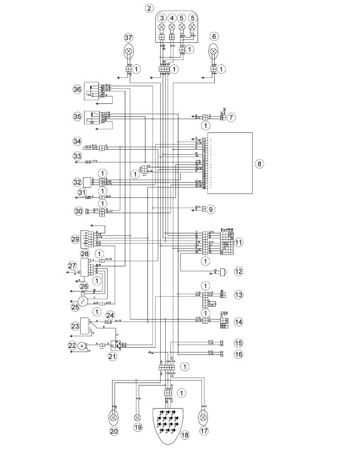 Can Am Wiring Diagram Can-Am DS 250 Wire Diagram Wiring