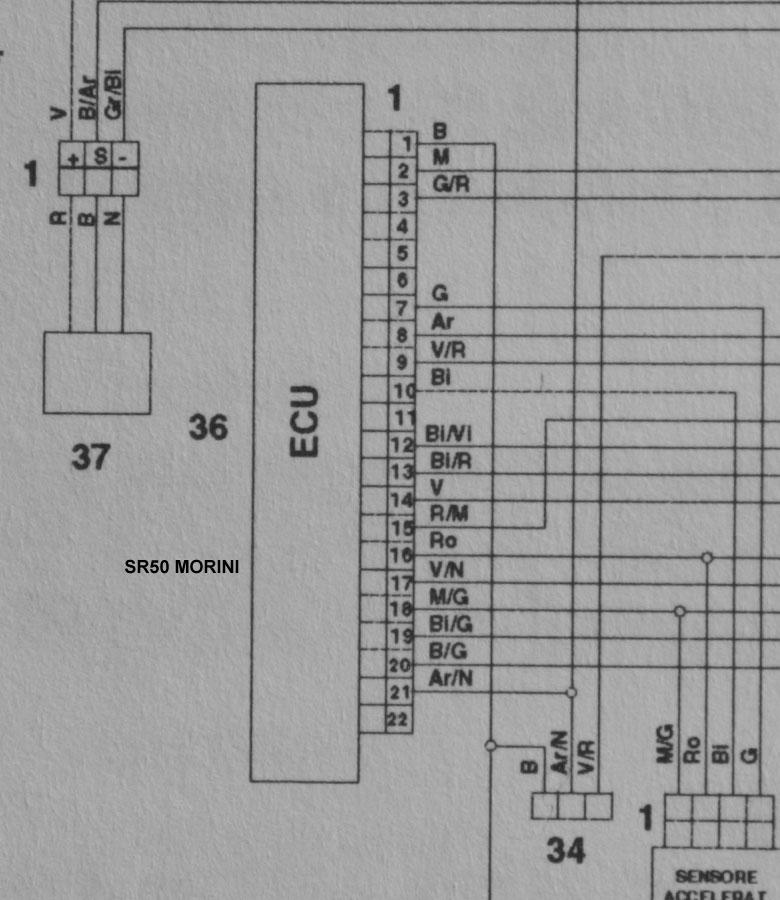 harley davidson panhead engine diagram  wire  auto wiring