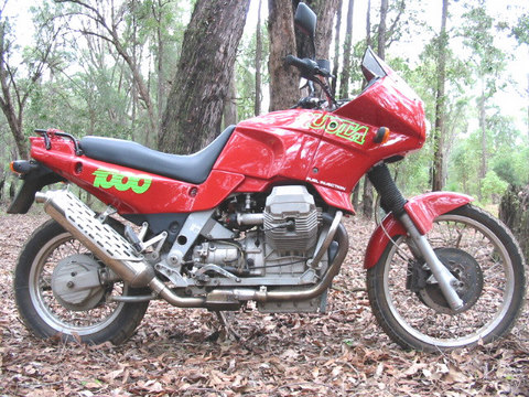 Name:  ross's new bike.jpg Views: 2437 Size:  91.5 KB